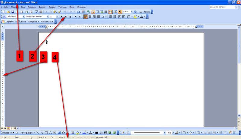 Вікно Microsoft Word
